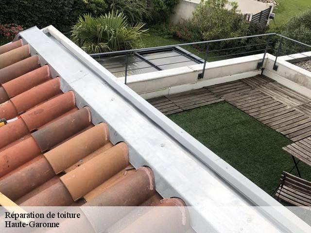 fuite toiture gallery of fuite de toiture mrule dans un